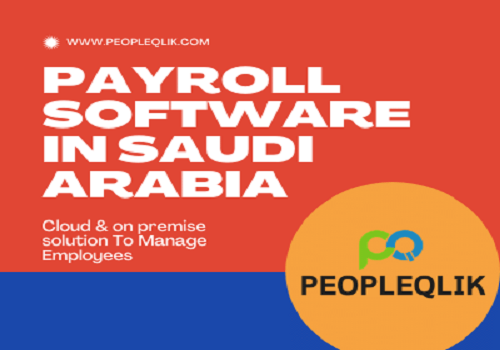 How Much Does Payroll Software in Saudi Arabia Cost? 2021 Pricing Guide