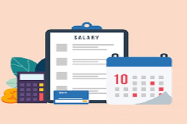 Prepare accurate payroll sheet with Payroll Software in Saudi Arabia