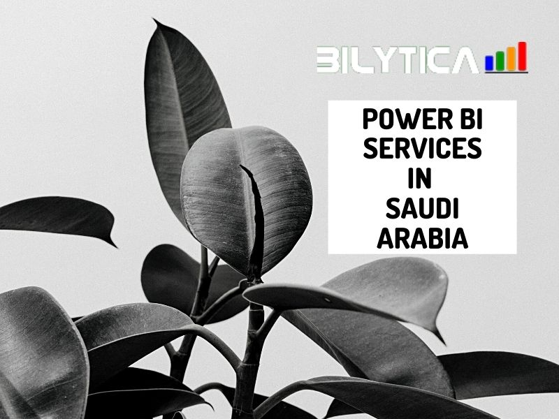 What are the advantages of using Power BI Services in Saudi Arabia?