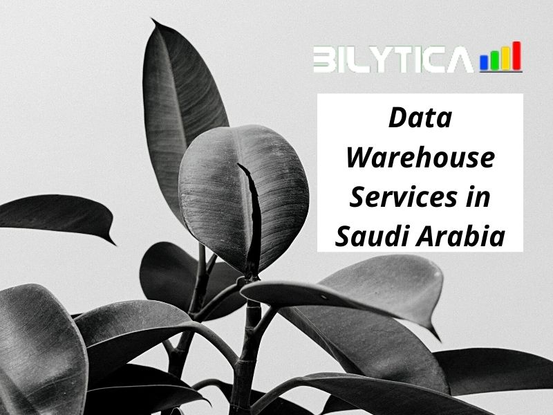 What are the benefits of using Data Warehouse Services in Saudi Arabia?