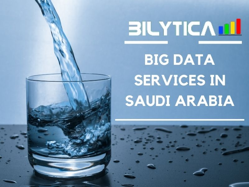 Big Data Services in Saudi Arabia: Firms Improve Supply Chain Operations